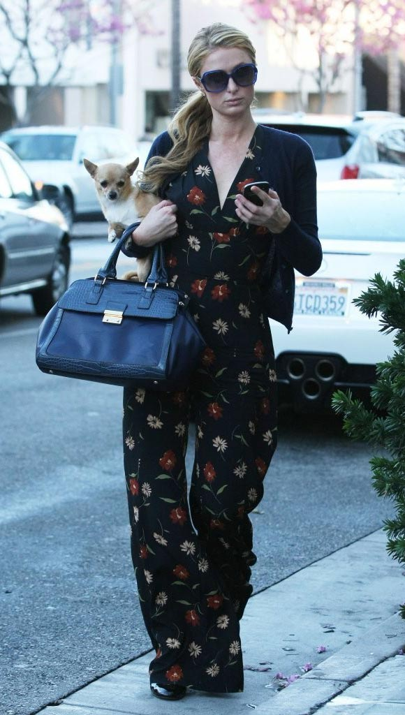 Paris-Hilton-outfit-dog-2015-01