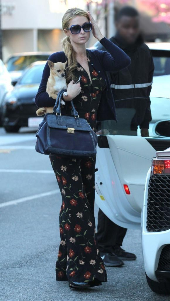 Paris-Hilton-outfit-dog-2015-02