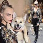 カーラ・デルヴィーニュ、愛犬と「シャネル」ショーに出席 #ファッション #2016SS