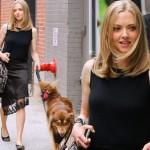 アマンダ・サイフリッド、犬のおしゃれなお散歩スタイル