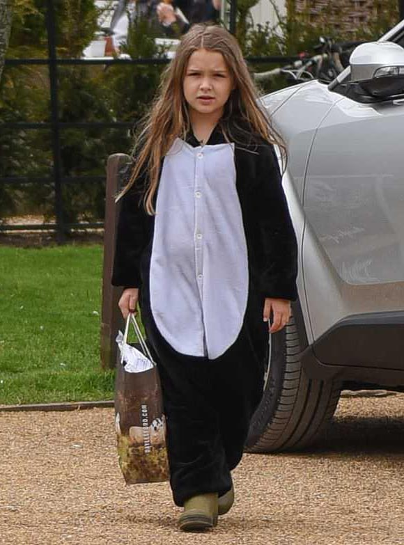 harper-beckham-penguin-costume-may-2018