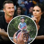 ベッカム夫妻、娘ハーパーちゃんの7歳の誕生日に約100万円の子馬をプレゼント!